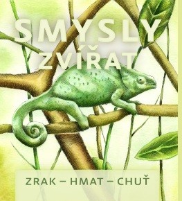 obálka ke knize: Smysly zvířat (zrak-hmat-chuť)