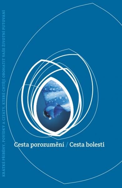 obálka ke knize: Kudy do nebe 6 - Cesta porozumění / Cesta bolesti